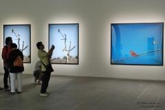 Biennale2011_049