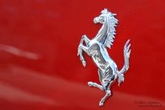 Ferrari_DanieleScarpa_110703_067b
