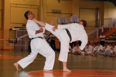 Karate_DanieleScarpa_110612_030