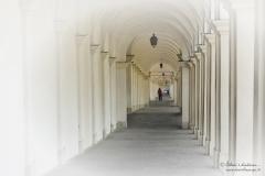 Vicenza_DanieleScarpa_140525_062G