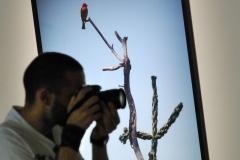 Biennale2011_050