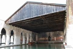 Biennale2011_116