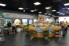 EXPO2015_DanieleScarpa_212
