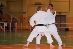 Karate_DanieleScarpa_110612_024