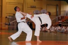 Karate_DanieleScarpa_110612_030