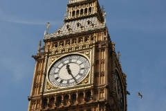 London_127D_DanieleScarpa