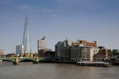 London_254-271C_DanieleScarpa